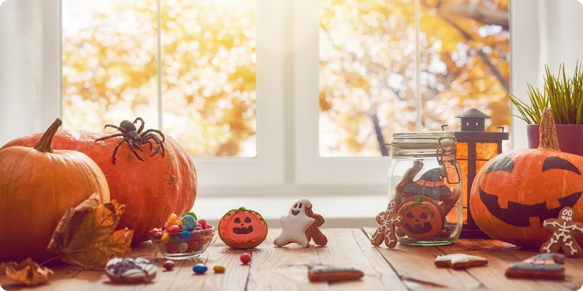 「ハロウィン」ってどんなお祭り?